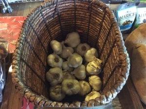 Garlic-Each